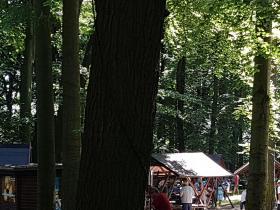 Sommerfest zum 41.Jubiläum - 03