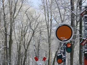 Wintersonderfahrt am 27.01 (2)